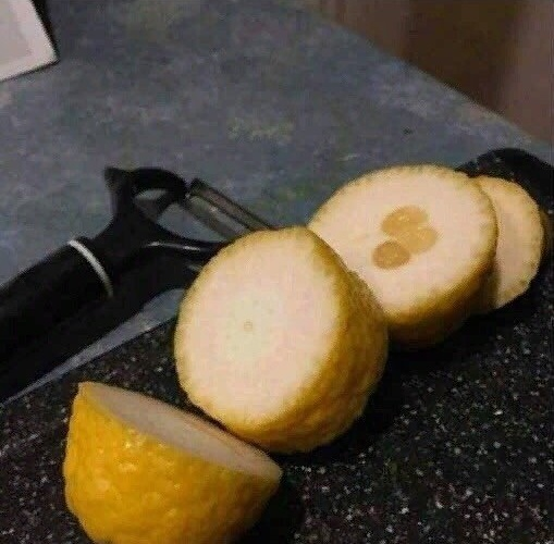 Когда жизнь даёт тебе лимоны, делай лимонад!